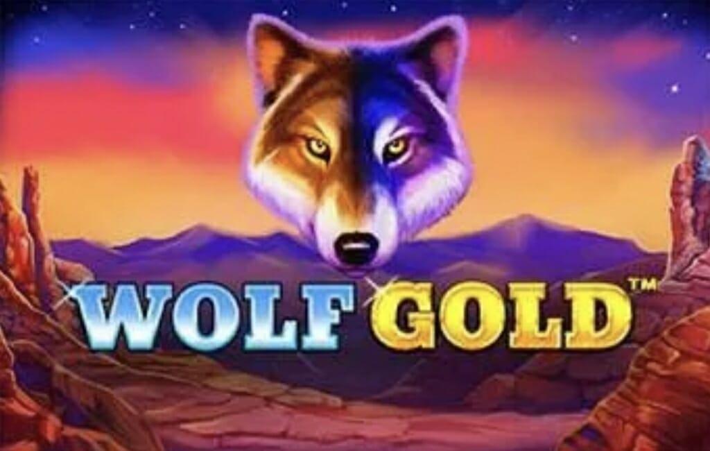 wild wolf kostenlos spielen casino spiele mit würfeln