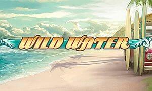 wild-water-logo