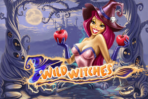 Wild Witches Logo