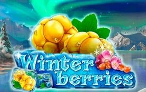 Winterberries Logo
