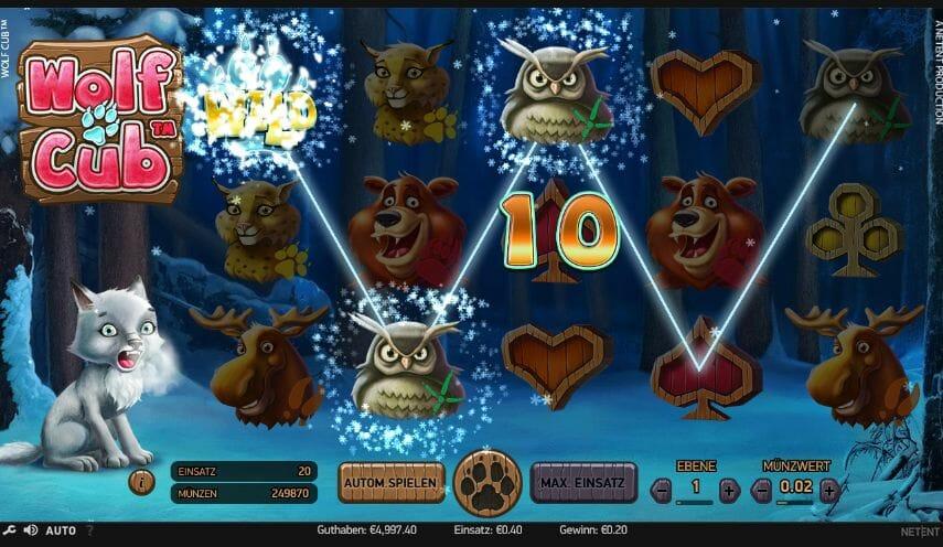 Wolf Cub - Casumo Casino